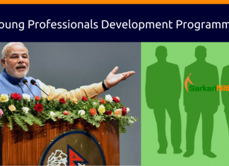 young Professionals for Development Programme